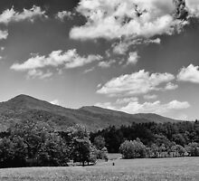 Mountain & Valley Redux #4 by Glenn Cecero