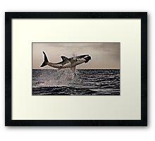 Air Jaws Framed Print