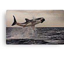 Air Jaws Canvas Print