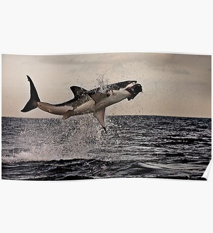 Air Jaws Poster