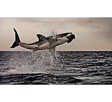 Air Jaws Photographic Print