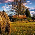 Fall Harvest by Randall Faulkner
