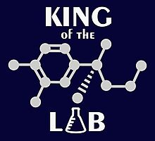 King of the Lab VRS2 Photographic Print