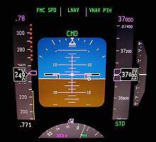 Technology: aircraft flight deck at 37000 ft. by FER737NG