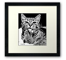 Right Between The Toes Framed Print