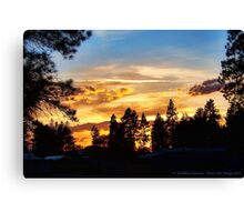 Return of the Sky Canvas Print