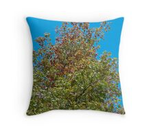 Frost Kissed Throw Pillow