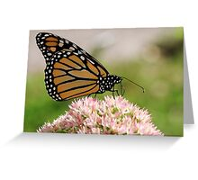 The Beauty Of A Monarch II Greeting Card