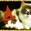 Have a Purrrfect Safe Halloween!!! © by Dawn Becker