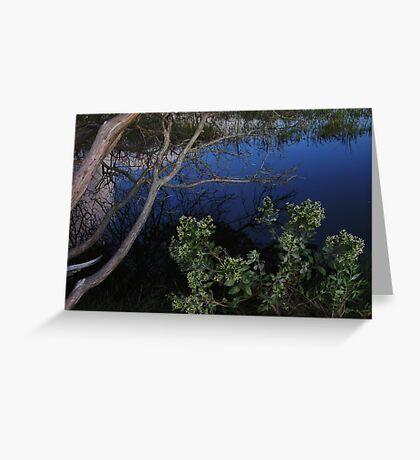 Ecological Wonder Greeting Card