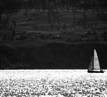 Summer Sailing by Sheri Bawtinheimer
