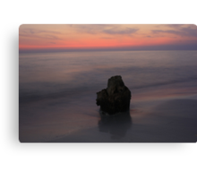 I'm so Lonely Canvas Print