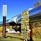 Trans Alaskan Pipeline Milepost ~ Fairbanks, Alaska by lanebrain photography