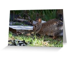 Rabbit- Imperfection is beauty  Greeting Card
