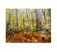 Autumnal Woods Art Print