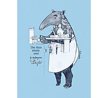 Tea time starts now - Malayan Tapir Photographic Print