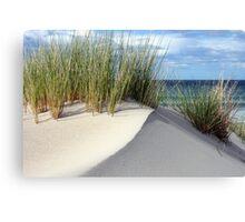 Another sand dune - Marion Bay Tasmania Canvas Print