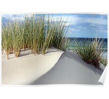 Another sand dune - Marion Bay Tasmania Poster