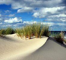 Sand dune 3 - Marion Bay Tasmania  by Nigel Butfield