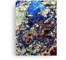 """planet earth"" Big Rock, Western Australia Canvas Print"