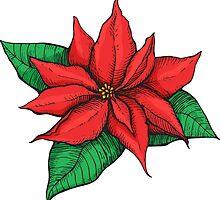 Poinsettia. Christmas decor flower by epine