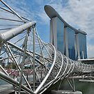 The Helix Bridge 2 by Adri  Padmos