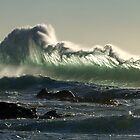 wild wave by Kip Nunn
