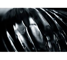 Silver Wave Photographic Print