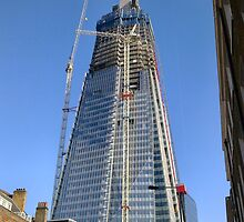 SHARD by Shoshonan