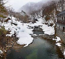 Takaragawa Onsen River by errno