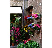 Spring in Siena Photographic Print