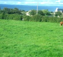 Irish Countryside Photo ag sm Sticker