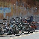 Urban bikes by Sherony Lock
