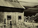 Roadside Barn  by Marcia Rubin