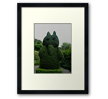 Topiary At Greenbank Gardens, Glasgow Framed Print