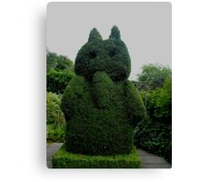 Topiary At Greenbank Gardens, Glasgow Canvas Print