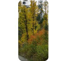 In The Fall Colors iPhone Case/Skin