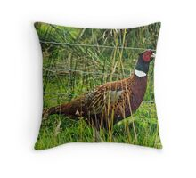 Cock Pheasant Throw Pillow