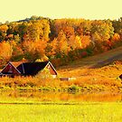 Fall Colors by Grinch/R. Pross