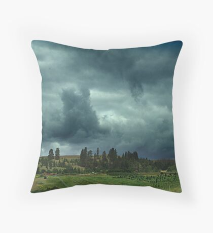 Summer Storm at Enderby Throw Pillow