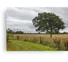Cheshire Countryside, Canvas Print