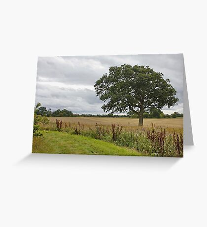 Cheshire Countryside, Greeting Card