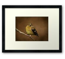 She Waits! Framed Print