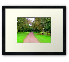 At a crossroads Framed Print