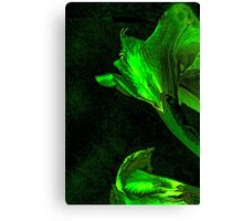 Eclectic Daffodil Canvas Print