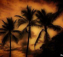 Vereda Tropical - Tropical Path by Bernai Velarde