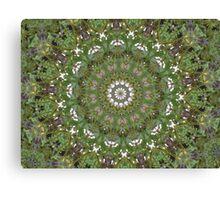 Experiment 1 Canvas Print