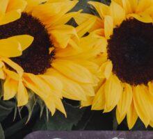 Sunflower Bouquet Sticker