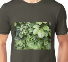 Dark green leaves of grapes close-up Unisex T-Shirt
