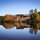 Little Island at Loch an Eilein by Christopher Thomson